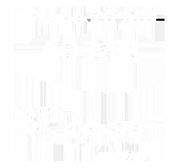 Plano 1